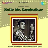 Thumbnail for the Viswanathan Ramamoorthy - Hello Mr. Zamindhar (Original Motion Picture Soundtrack) link, provided by host site