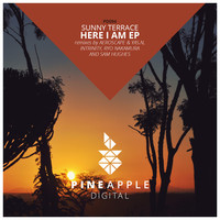 Thumbnail for the Sunny Terrace - Here I Am - Sam Hughes Remix link, provided by host site