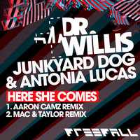 Thumbnail for the Dr Willis - Here She Comes link, provided by host site