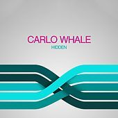 Thumbnail for the Carlo Whale - Hidden link, provided by host site