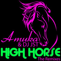 Thumbnail for the Amuka - High Horse (The Remixes) link, provided by host site