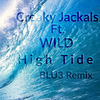Thumbnail for the Creaky Jackals - High Tide [BLU3 Remix] [Creaky Jackals High Tide] link, provided by host site