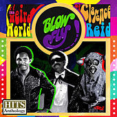 Thumbnail for the Blowfly - Hits Anthology: The Weird World of Clarence Reid link, provided by host site