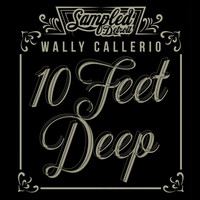 Thumbnail for the Amp Fiddler - Hollywood - Wally Callerio Remix link, provided by host site