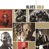 Thumbnail for the Junior Wells - Hoodoo Man Blues link, provided by host site