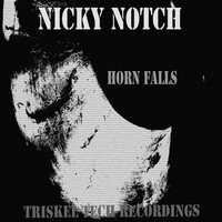 Thumbnail for the Nicky Notch - Horn Falls link, provided by host site