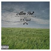 Thumbnail for the Allen Poe - How Gardens Grow (Selected Remixes) link, provided by host site