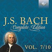 Thumbnail for the Netherlands Bach Collegium - I. Concerto. Bringet dem Herrn Ehre link, provided by host site