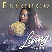 Thumbnail for the essence - I'll Get By link, provided by host site