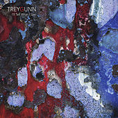 Thumbnail for the Trey Gunn - I'll Tell What I Saw link, provided by host site