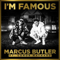 Thumbnail for the Marcus Butler - I'm Famous link, provided by host site