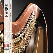 Thumbnail for the Duo Capriccioso - I. Poco allegretto - Allegro - Più allegro link, provided by host site