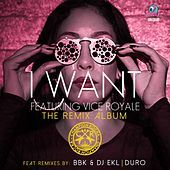 Thumbnail for the Champion Rocka - I Want (The Remix Album) link, provided by host site