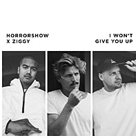 Thumbnail for the Ziggy Alberts - I Won't Give You Up link, provided by host site