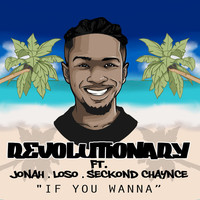 Thumbnail for the Revolutionary - If You Wanna link, provided by host site