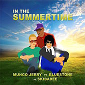 Thumbnail for the Bluestone - In The Summertime link, provided by host site