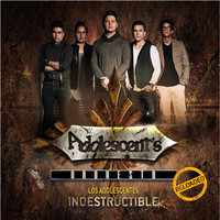 Thumbnail for the Adolescent's Orquesta - Indestructible Reloaded link, provided by host site