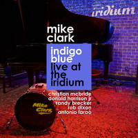 Thumbnail for the Mike Clark - Indigo Blue Live At The Iridium link, provided by host site