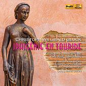 Thumbnail for the Pierre Mollet - Iphigénie en Tauride, Wq. 46, Act II: Act II: Vengeons et la nature (les Euménides, Oreste) link, provided by host site
