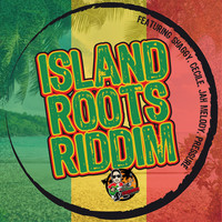 Thumbnail for the Don Corleon - Island Roots Riddim link, provided by host site
