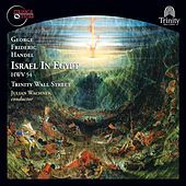 Thumbnail for the Trinity Baroque Orchestra - Israel in Egypt, HWV 54 (1756 version): Part I: Air: What though I trace each herb and flow'r (Joseph) link, provided by host site