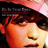Thumbnail for the Andy Rourke - It's in Your Eyes link, provided by host site