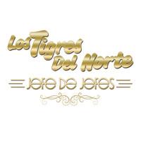 Thumbnail for the Los Tigres Del Norte - Jefe De Jefes (En Vivo) link, provided by host site