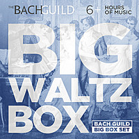 Thumbnail for the Johann Strauss - Johann Strauss, Sr.: Bajaderen Waltz, Op. 53 link, provided by host site