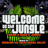 Thumbnail for the Aries - Jungle Music link, provided by host site