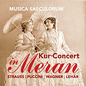 Thumbnail for the Musica Saeculorum - Kaiser-Walzer, Op. 437 link, provided by host site