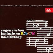 Thumbnail for the Klara Havlikova - Kaleidoscope: II. Allegro - Andante - Vivace, quasi Scherzo link, provided by host site