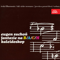 Thumbnail for the Klara Havlikova - Kaleidoscope: IV. Impromptu - Poco lento - Largo improvizando - Allegro link, provided by host site