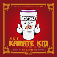 Thumbnail for the A.N.T - Karate Kid link, provided by host site