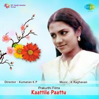 Thumbnail for the B. Vasantha - Karimanakkuda Choodi link, provided by host site