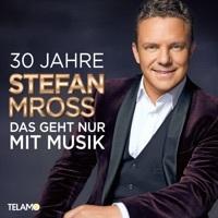Thumbnail for the Stefan Mross - Kein Herz für eine Nacht link, provided by host site