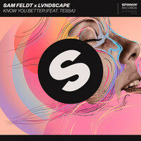 Thumbnail for the Sam Feldt - Know You Better link, provided by host site