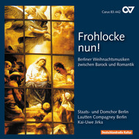 Thumbnail for the Carl Heinrich Graun - Kommt Christen, feyert dieses Fest: Recitative: Ich stelle Dich mir vor (Alto) link, provided by host site