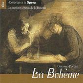 "Thumbnail for the Ileana Cotrubas - La Bohème, Act I: ""O soave Fanciulla"" link, provided by host site"