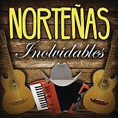 Thumbnail for the Los Tigres Del Norte - La Puerta Negra link, provided by host site