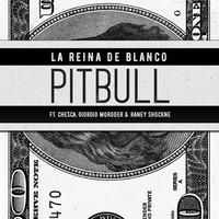 Thumbnail for the Pitbull - La Reina De Blanco link, provided by host site