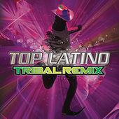 Thumbnail for the Los Cuates de Sinaloa - La Reina Del Sur (DJ Chazal Tribal Mix) link, provided by host site
