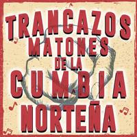 Thumbnail for the Los Tigres Del Norte - La Tinajita link, provided by host site