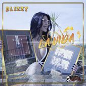 Thumbnail for the Blizzy - La Vida link, provided by host site