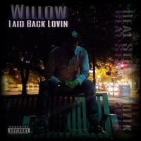 Thumbnail for the Willow - Laid Back Lovin' link, provided by host site