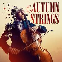 """Thumbnail for the Antonio Vivaldi - Le quattro stagioni (The Four Seasons), Op. 8 - Concerto No. 3 in F Major, RV 293, """"L'autunno"""" (Autumn): III. La caccia: Allegro link, provided by host site"""
