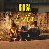 Thumbnail for the RIDSA - Leila link, provided by host site