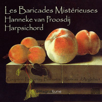 Thumbnail for the Hanneke van Proosdij - Les Baricades Misterieuses link, provided by host site