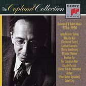 Thumbnail for the Aaron Copland - Letter From Home (Instrumental) link, provided by host site