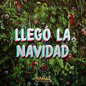 Thumbnail for the Los Mirlos - Llegó la Navidad link, provided by host site