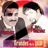 Thumbnail for the Junior Gonzalez - Lo pasado pasado link, provided by host site